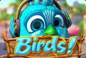 Birds Online Slot without Registration - Symbols and Bonuses