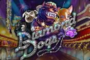 Online Slot Diamond Dogs - Short Review, How to Play