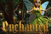 Online Slot Game Enchanted - Symbols and Management
