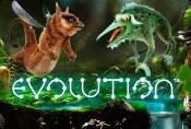 Evolution Online Slot Machine - Play with Bonus Game for Free