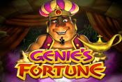Genies Fortune Online Slot Machine with Prize Combinations