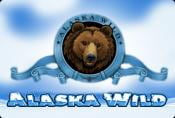 Alaska Wild Slot Machine With Free Spins And Risk Game