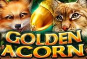 Golden Acorn Casino Slot Online - Play Free with Risk Game