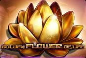 Free Online Slot Golden Flower of Life Machines
