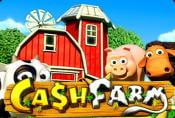 How to Play Slot Machine Cash Farm - Game with Wild Symbols
