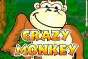 Online Slot Crazy Monkey with Risk Game and Bonuses