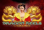 Online Slot Game Dragon Reels For Free no Download