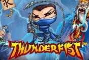 Online Video Slot Thunderfist game with Bonus Rounds