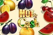 Online Slot Machine Hot Cash no Downloads