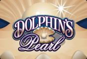 Dolphins Pearl Slot Machine For Free no Download and no Registration