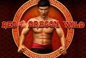 Online Video Slot Machine Red Dragon Wild no Download