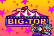 Big Top Online Slot Game - Symbols and Payouts