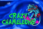 Video Slot Crazy Chameleons - Bonus Combinations and Symbols
