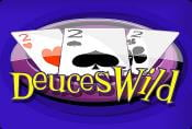 Video Poker Deuces Wild Slot Machine - Game Process and Combinations