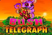 Online Video Slot Bush Telegraph - Free Spins and a Bonus Round