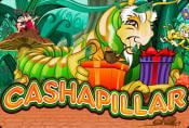 Online Slot Machine Cashapillar - Special Rounds & Opportunities
