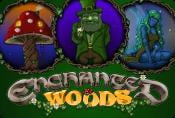 Enchanted Woods Slot Machine - Play Game by Microgaming Online