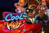 Online Slot Game Cool Wolf - Symbols and Payments Game