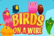 Birds on a Wire Slot Machine - Interesting Features of Demo Game
