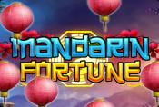 Mandarin Fortune Slot Game with Bonus Options and Wild Symbol