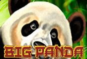 Big Panda Slot - Review of Symbols in Demo Game and Free to Play