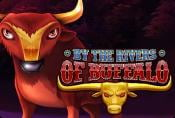 By the Rivers of Buffalo Slot Game - Play Online Without Registration