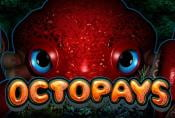 Octopays Slot Machine - Play Online without Deposit & Registration