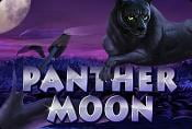 Video Slot Machine Panther Moon Online Slots Game Free