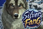 Silver Fang Slot Machine - Play Online with Free Spins no Download