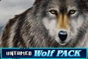 Untamed Wolf Pack Free Slot Online With Bonuses and Risk Game