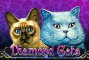 Diamond Cats Slot - How to Play & Bonus Spins in Game