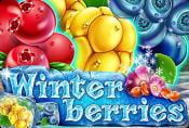 Winterberries Slot Machine by Yggdrasil Gaming - Free to Play