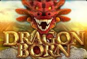 Online Video Slot Dragon Born Game Free