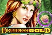 Online Slot Druidess Gold - Symbols and Coefficients