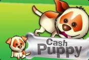 Online Video Slot Cash Puppy - Game Strategy And How To Play