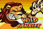Online Video Slot Machine Wild Gambler - Play With Bonus