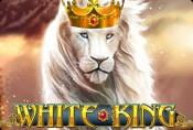 Online Video Slot White King - Play Game with Bonus