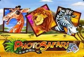 Online Slot Game Photo Safari with Bonus Rounds no Downloads