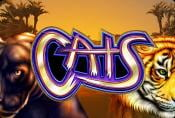 Online Slot Machine Cats with Free Spins Play Free