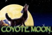 Online Slot Game Coyote Moon Free Bonus