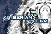 Siberian Storm Slot Game - Play Online with Bonus Symbols