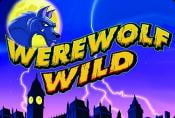 Werewolf Wild Slot Machine - Game Aristocrat Gaming Free to Play