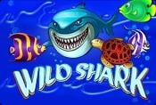 Wild Shark Slots - Play for Free and Read Game Review