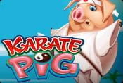 Karate Pig Slot Machine - Play & Read Game Review on Special Symbols